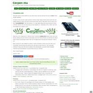 cerpenmu.com